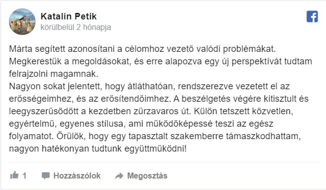 Petik Katalin, szövegíró